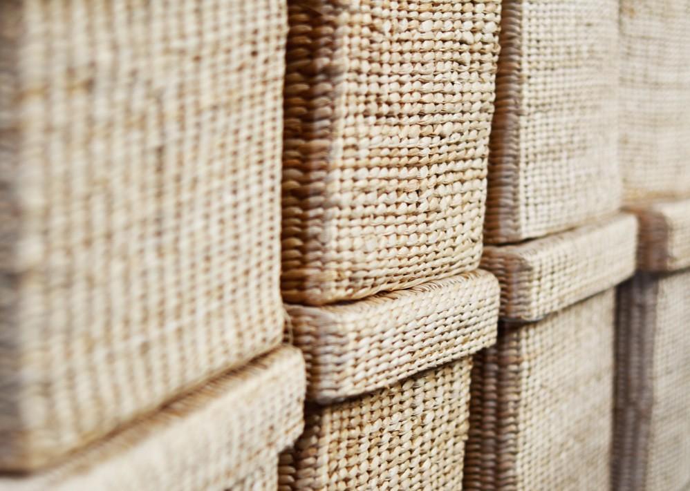 Piante Da Regalo : Zibor cesteria a milano segrate